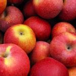 О долгоиграющих мандаринах и вечных яблоках